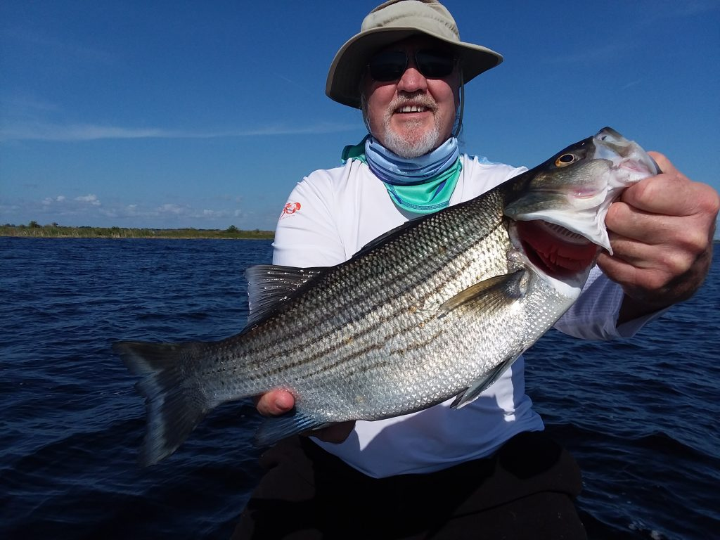 Okeechobee fishing guides okeechobee fishing report 11 28 for Lake okeechobee fishing guides