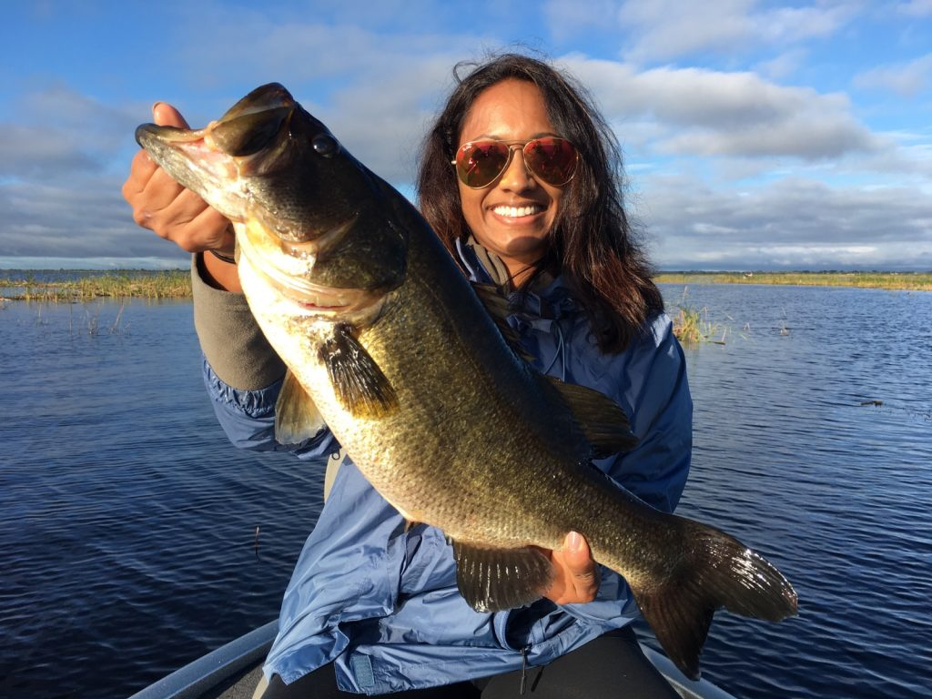 Okeechobee fishing guides okeechobee fishing report 11 24 for Lake okeechobee fishing guides